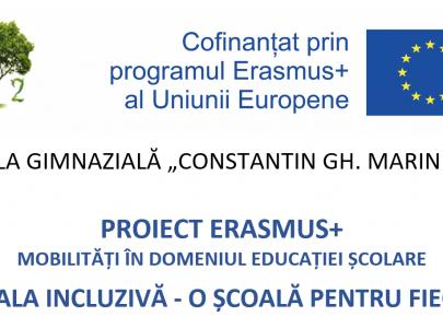 Proiecte europene/internaționale